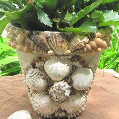 garden-shell-pot