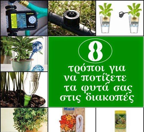 πότισμα φυτών σε διακοπές