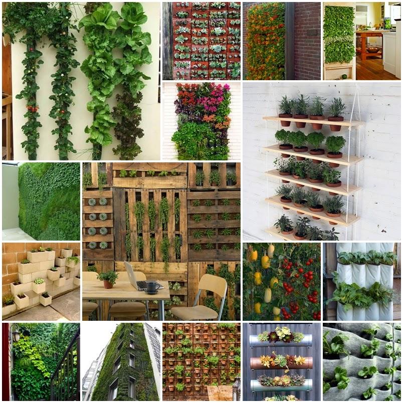 Κάθετος κήπος και πως να φτιάξετε έναν.
