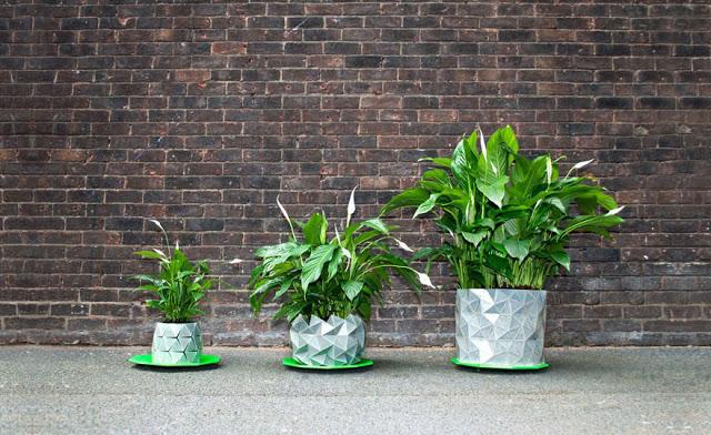 γλάστρες origami που μεγαλώνουν όσο μεγαλώνει και το φυτό