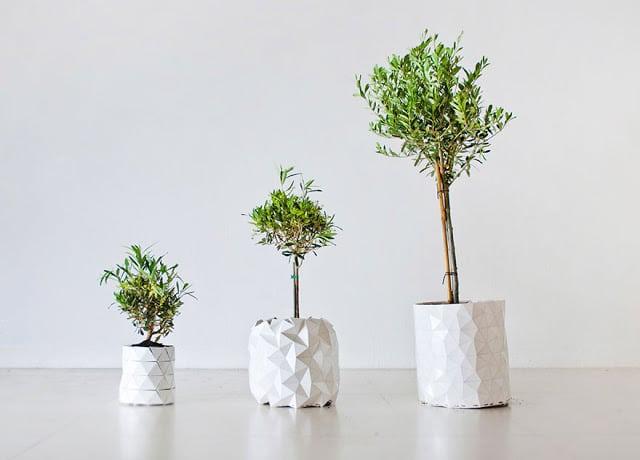 Growth γλάστρες origami