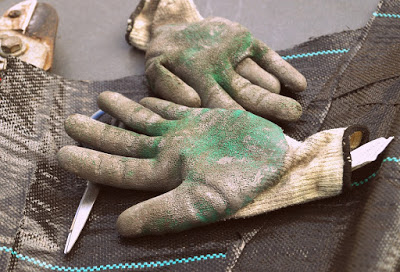 gloves-1252355_960_720