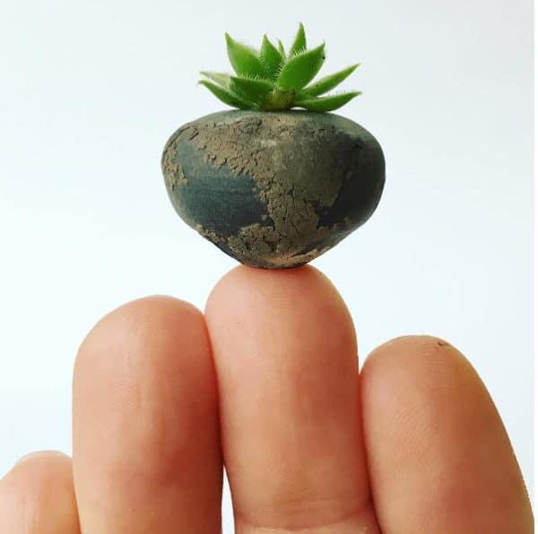 Πανέμορφα μικροσκοπικά κεραμικά