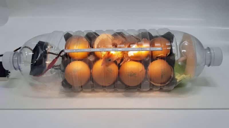 DIY κλωσσομηχανή από πλαστικό μπουκάλι