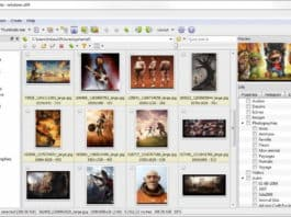 xnviewmp image editor